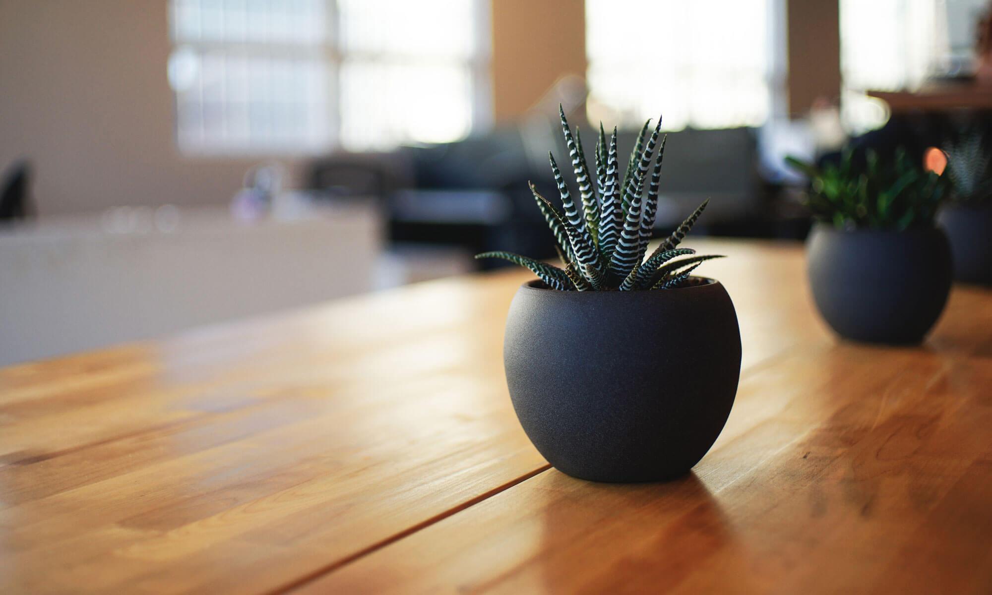 横浜市緑区中山にある美容室DarJinのサロンブログ